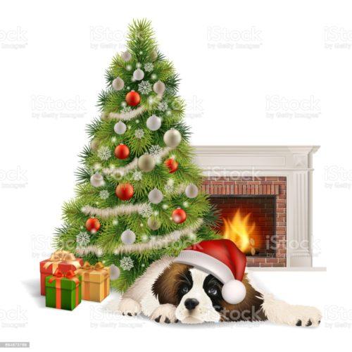 Die Hundesportschule-Neumarkt wünscht Frohe Weihnachten und einen guten Rutsch ins neue Jahr 2021!