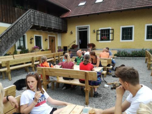 Hundewandertag Sommer 2017