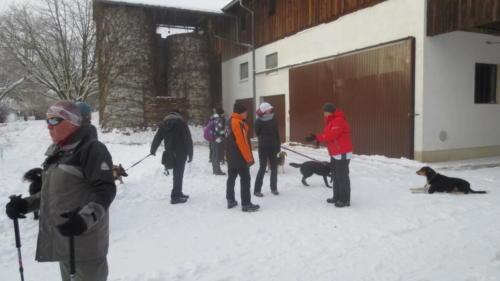 Hundewandertag 2017 001