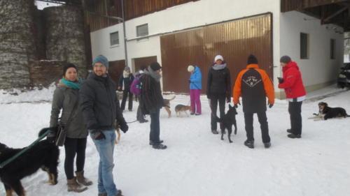 Hundewandertag 2017 002