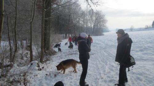 Hundewandertag 2017 008