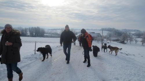 Hundewandertag 2017 011