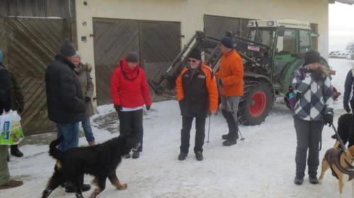 Hundewandertag 2017 017