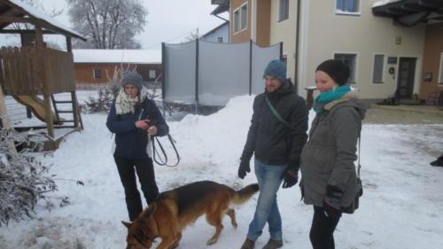 Hundewandertag 2017 020